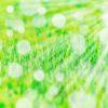 辛口上林ファンが振り返る2020年7月14日から7月19日の上林選手中心ソフトバンクニュースと成績